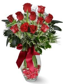 9 adet gül  Ankara Anadolu internetten çiçek satışı  kirmizi gül
