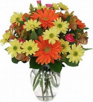 Ankara Anadolu hediye sevgilime hediye çiçek  vazo içerisinde karışık mevsim çiçekleri