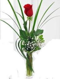 Cam içerisinde 1 kırmızı gül  Ankara Anadolu çiçek gönderme sitemiz güvenlidir