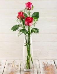 Cam içerisinde 3 kırmızı gül  Ankara Anadolu çiçek satışı
