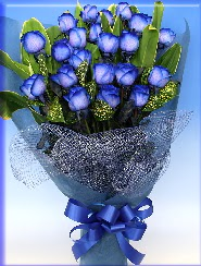 19 adet eşsiz mavi gül buketi  Ankara Anadolu uluslararası çiçek gönderme