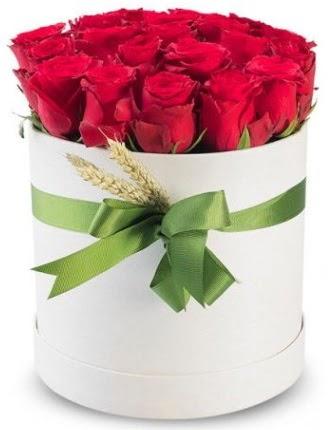 Özel kutuda 25 adet kırmızı gül çiçeği  Ankara Anadolu çiçek satışı