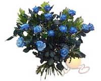 Ankara Anadolu çiçek , çiçekçi , çiçekçilik  11 adet mavi gül özel tanzim