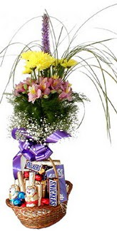 Ankara Anadolu hediye sevgilime hediye çiçek  Mevsim çiçekleri ve çikolata