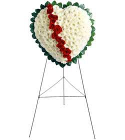 Ankara Anadolu internetten çiçek siparişi  kalbimin tek sahibisin benim
