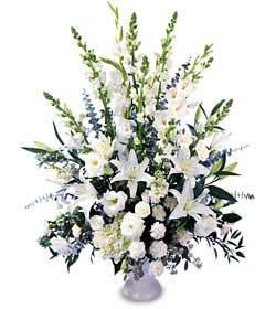 Ankara Anadolu online çiçek gönderme sipariş  saf temiz sevginin gücü çiçek modeli