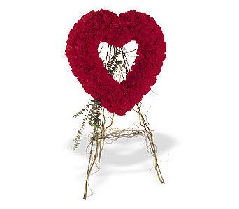 Ankara Anadolu internetten çiçek satışı  karanfillerden kalp pano