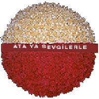 arma anitkabire - mozele için  Ankara Anadolu çiçek gönderme sitemiz güvenlidir