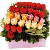 15 adet renkli gül ve cam   Ankara Anadolu çiçekçi mağazası