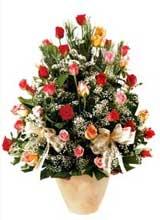91 adet renkli gül aranjman   Ankara Anadolu çiçek gönderme sitemiz güvenlidir
