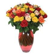 51 adet gül ve kaliteli vazo   Ankara Anadolu çiçek gönderme sitemiz güvenlidir