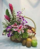 orkide kazablanka ve sepet  Ankara Anadolu çiçek yolla