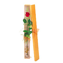 ince  kutuda  1  gül   Ankara Anadolu çiçek yolla