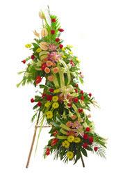 üç katli perförje çiçegi  Ankara Anadolu çiçekçi mağazası