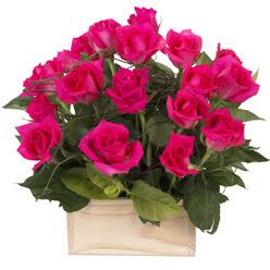 12 adet pembe güllerden sepet tanzimi  Ankara Anadolu yurtiçi ve yurtdışı çiçek siparişi