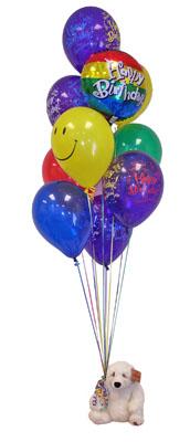 Ankara Anadolu çiçekçi telefonları  Sevdiklerinize 17 adet uçan balon demeti yollayin.