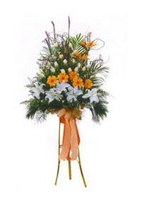 Ankara Anadolu çiçek mağazası , çiçekçi adresleri  Kazablanka, gerbera ve güllerle hazirlanmis ferfor
