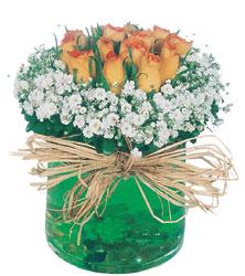 Ankara Anadolu internetten çiçek satışı  Cam yada mika içerisinde 9 adet  gül aranjmani