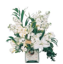 Ankara Anadolu internetten çiçek siparişi  sadece beyazlardan olusmus mevsim cam yada mika tanzim