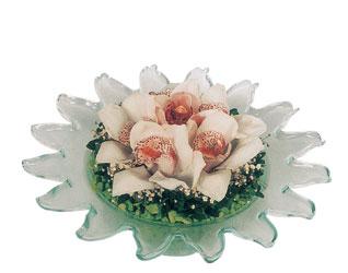Ankara Anadolu hediye sevgilime hediye çiçek  Cam içerisinde 3 adet kandil orkide