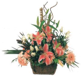 Ankara Anadolu çiçek , çiçekçi , çiçekçilik  Mevsimsel Çok özel sevdiklerinize çiçek tanzimi