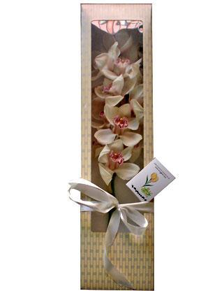 Ankara Anadolu anneler günü çiçek yolla  ÖZEL SEVENLERE 1 DAL ORKIDE
