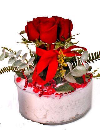 Ankara Anadolu çiçek online çiçek siparişi  SEVMEK GÜZEL DIYENLERE 7 ADET GÜL