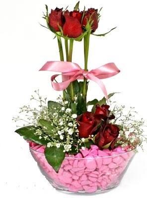 Ankara Anadolu Anadolu İnternetten çiçek siparişi  SEVIYORUM DIYENLER 7 kirmizi gül tanzim