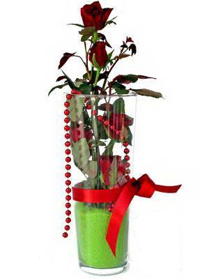 Ankara Anadolu online çiçek gönderme sipariş  Cam yada mika içerisinde 9 adet kirmizi gül - sevdiklerinize özel