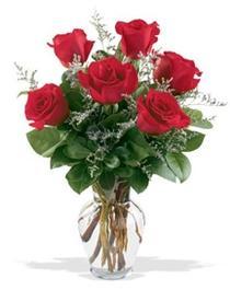 Ankara Anadolu çiçek gönderme sitemiz güvenlidir  7 adet kirmizi gül cam yada mika vazoda sevenlere