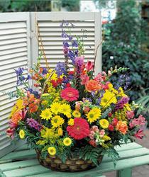 Ankara Anadolu hediye sevgilime hediye çiçek  karisik mevsim sepet çiçegi