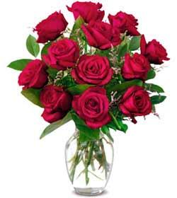 Ankara Anadolu online çiçek gönderme sipariş  1 düzine kirmizi gül sevenlere özel vazo gülleri