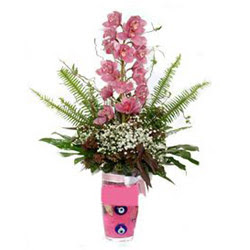 Ankara Anadolu hediye çiçek yolla  cam yada mika vazo içerisinde tek dal orkide çiçegi