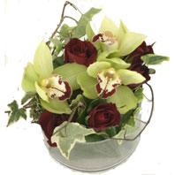 Ankara Anadolu kaliteli taze ve ucuz çiçekler  1 kandil orkide ve 5 adet kirmizi gül