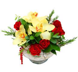 Ankara Anadolu çiçek gönderme  1 adet orkide 5 adet gül cam yada mikada