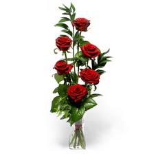 Ankara Anadolu uluslararası çiçek gönderme  mika yada cam vazoda 6 adet essiz gül