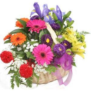 Karisik mevsim çiçekleri sepeti  Ankara Anadolu internetten çiçek siparişi