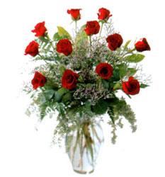 Vazo içerisinde 11 kirmizi gül  Ankara Anadolu çiçek siparişi vermek