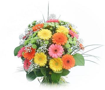13 adet gerbera çiçegi buketi  Ankara Anadolu online çiçek gönderme sipariş