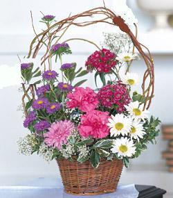 Görsel kir çiçegi sepeti mis kokulu  Ankara Anadolu çiçek siparişi sitesi