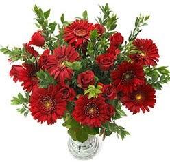 5 adet kirmizi gül 5 adet gerbera aranjmani  Ankara Anadolu hediye çiçek yolla