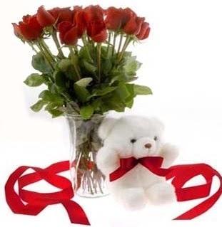 Ankara Anadolu çiçek satışı  8 adet kirmizi gül ve pelus ayicik  Ankara Anadolu çiçek siparişi vermek
