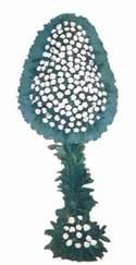 Ankara Anadolu online çiçek gönderme sipariş  dügün açilis çiçekleri  Ankara Anadolu güvenli kaliteli hızlı çiçek