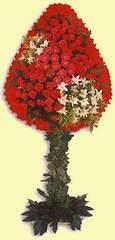 Ankara Anadolu çiçek gönderme  dügün açilis çiçekleri  Ankara Anadolu çiçek online çiçek siparişi