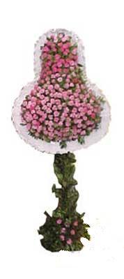 Ankara Anadolu ucuz çiçek gönder  dügün açilis çiçekleri  Ankara Anadolu internetten çiçek siparişi
