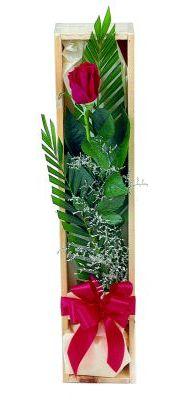 1 adet kutuda kirmizi gül  Ankara Anadolu çiçek gönderme sitemiz güvenlidir
