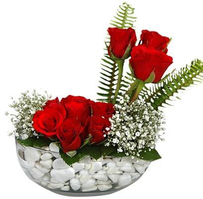 cam içerisinde 9 adet kirmizi gül  Ankara Anadolu çiçek siparişi vermek