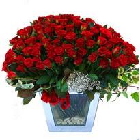 Ankara Anadolu çiçekçiler   101 adet kirmizi gül aranjmani