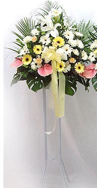 Ankara Anadolu online çiçek gönderme sipariş   perförje çiçegi dügün çiçekleri