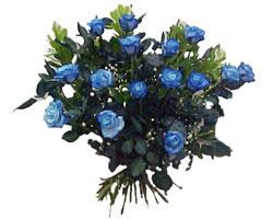 Ankara Anadolu Anadolu İnternetten çiçek siparişi  9 mavi gül güzel bir buket